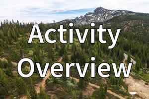 Activity Overview