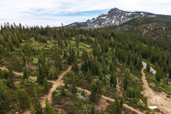 Packer Saddle loops - a summer camp favorite